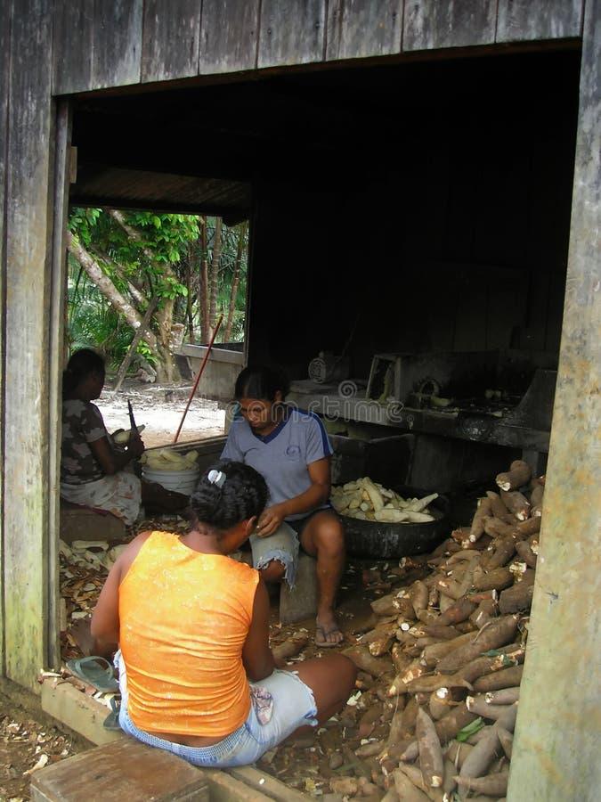 Identification : La communauté de 115482175 Amazone photos stock