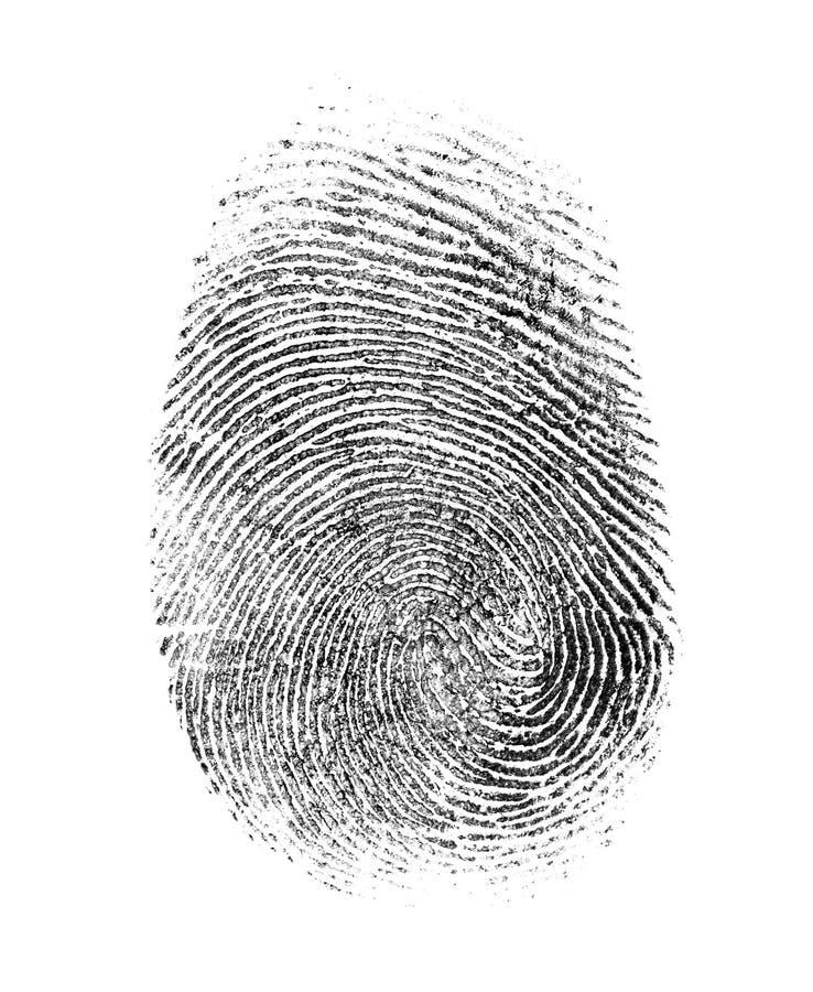 Identifiera med fingeravtryck fotografering för bildbyråer