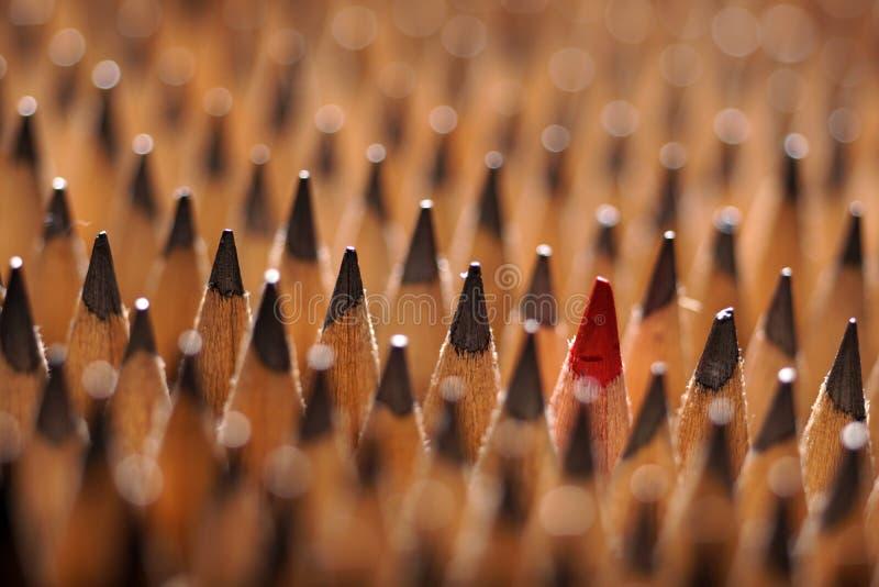 Identiska svarta grafitblyertspennor och en röd blyertspenna royaltyfria bilder
