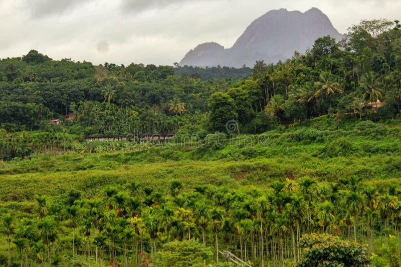 Idiki Kerala, God& x27; s posiada kraju fotografia royalty free