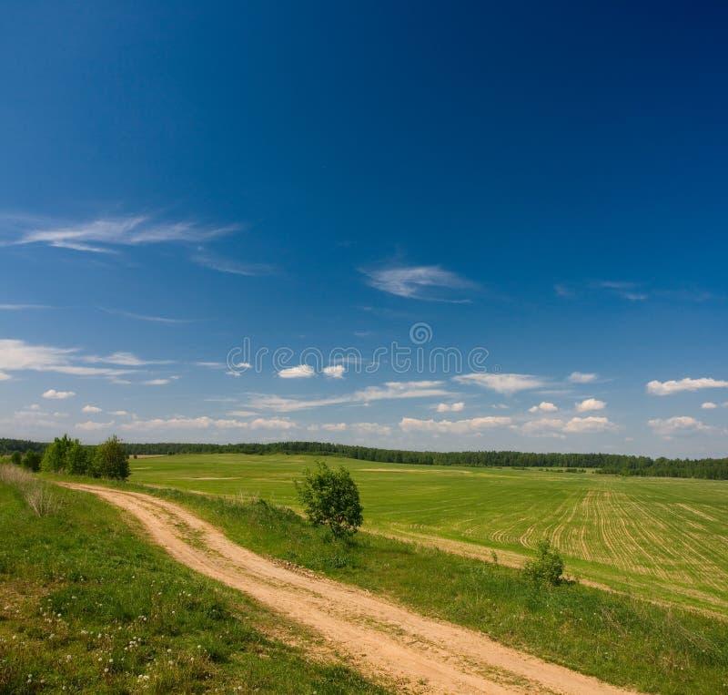Idilic landwirtschaftliche Landschaft lizenzfreies stockbild