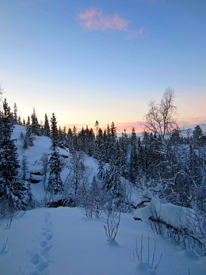 Idilio del invierno fotos de archivo