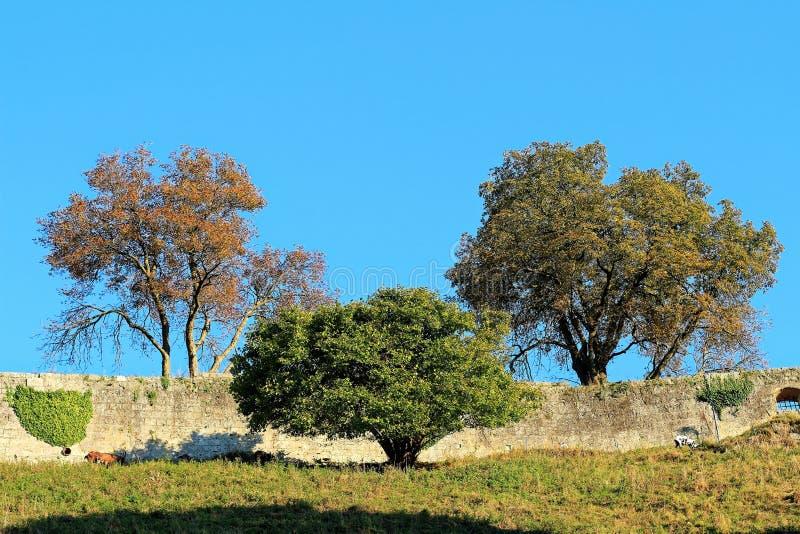 Idilio otoñal del paisaje en la pared del castillo imágenes de archivo libres de regalías