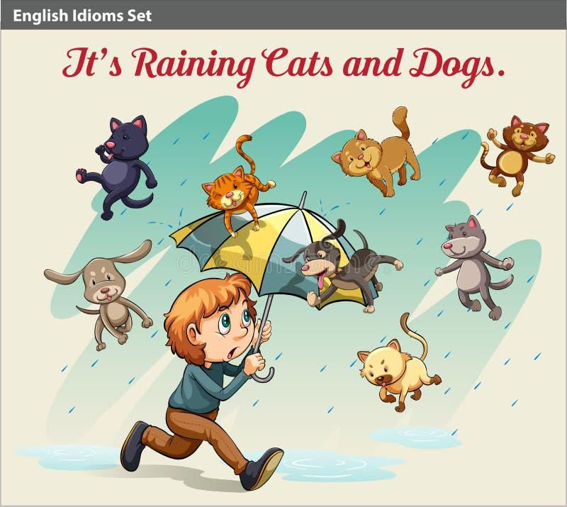 Idiom pokazuje deszcz z zwierzętami ilustracja wektor
