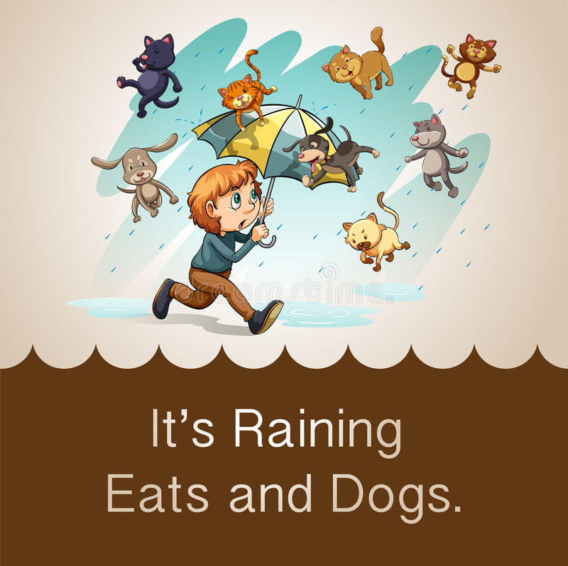 It S Raining Cats And Dogs Idiom Stock Vector Illustration Of Animal Puppy 57657093