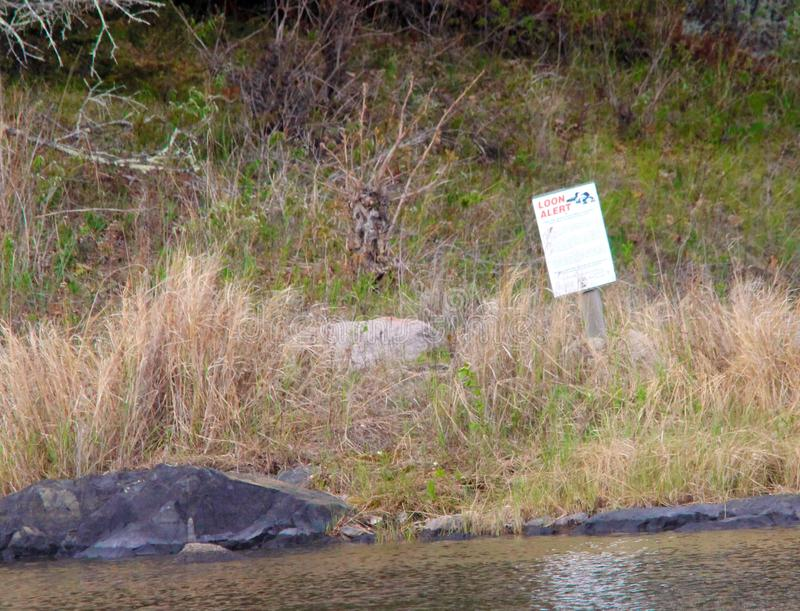 Idiotverschachtelung Insel-Bereich See des Holzes lizenzfreie stockfotos