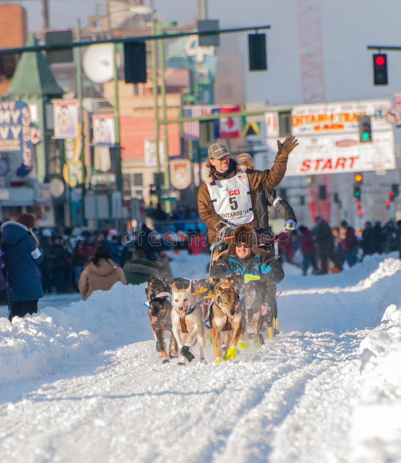 Iditarod start royaltyfri foto