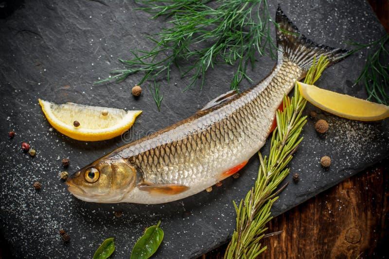 Ido del pesce fresco su una lastra di pietra nera circondata vicino immagine stock
