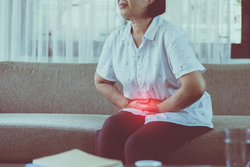 Idosos asiáticos com dor de estômago enquanto estão sentados no sofá em casa, mulheres idosas com dor abdominal imagens de stock