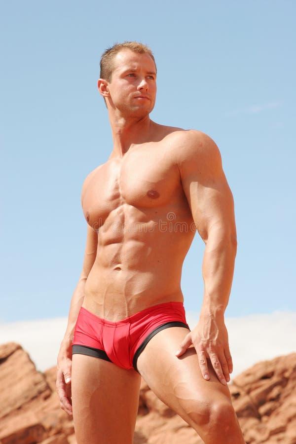idrotts- male model sexigt royaltyfria bilder