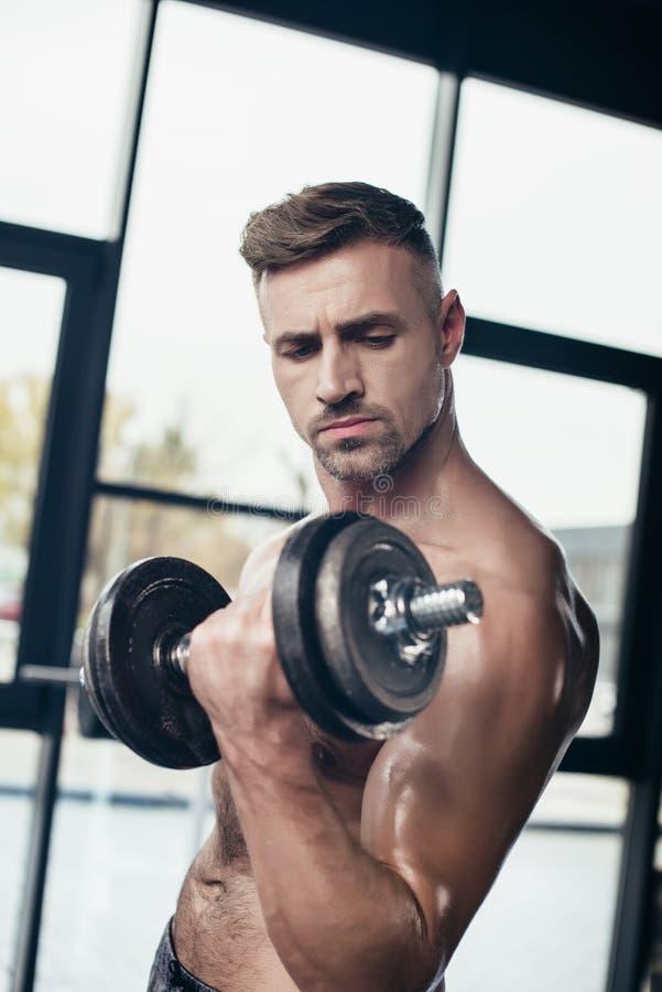 idrotts- shirtless idrottsmanutbildning med hanteln royaltyfri fotografi
