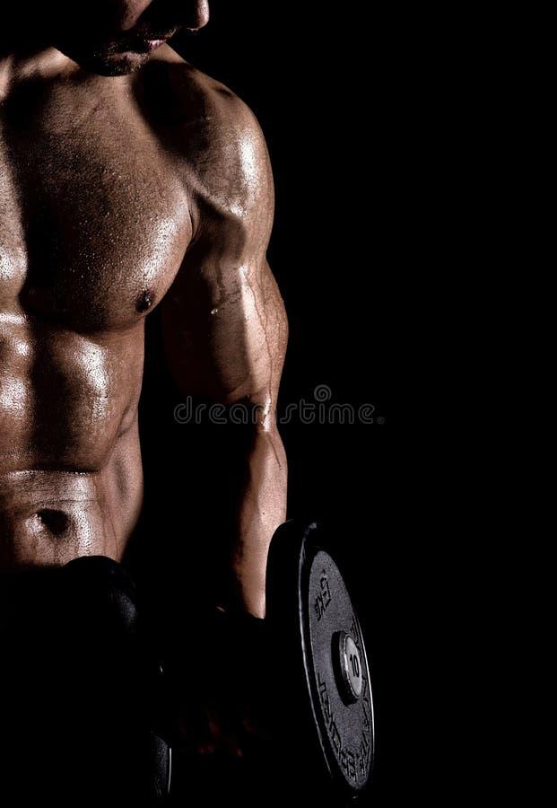 idrottshall för kondition för kroppsbyggarebegreppshantel arkivbilder