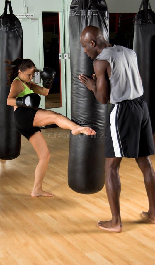 idrottshallkickboxer royaltyfria bilder