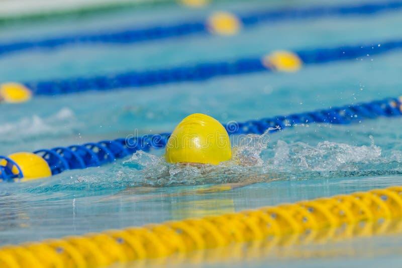 Idrottsman nen för huvud för simningbröstslaglängd royaltyfri fotografi