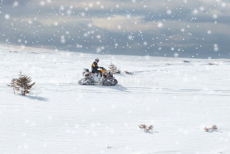 Idrottsman nen på en snövesslainflyttning vinterskogen i bergen royaltyfri fotografi