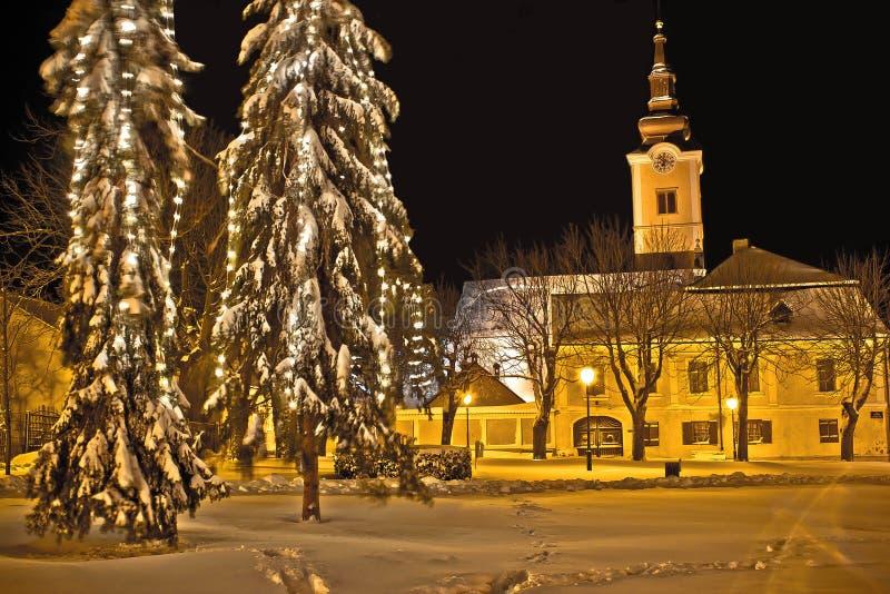 Idylic冬天在雪的都市风景晚上 免版税库存图片