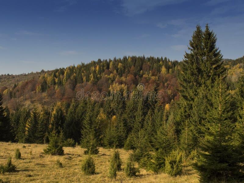 Idyll av ett berg under blå himmel fotografering för bildbyråer