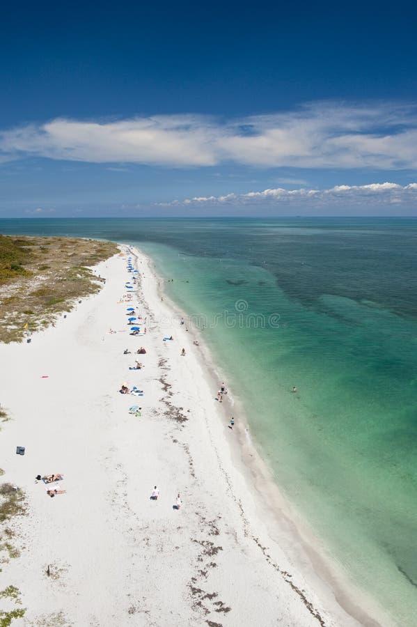 Download Idyllic beach stock image. Image of florida, seascape - 13352937