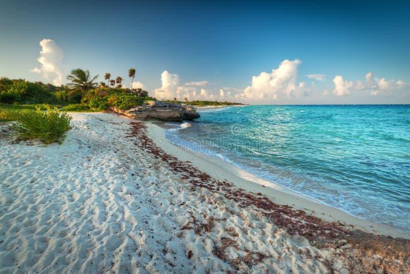 Idyllic beach of Caribbean Sea in Mexico stock photo
