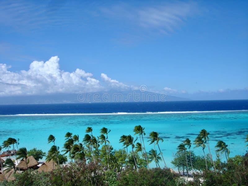 Idyllic beach located in Tahiti. Seascape in Morea, French Polynesia stock photography