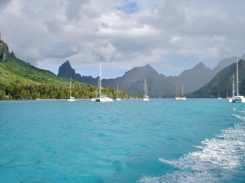 Idyllic beach located in Tahiti. Seascape in Morea, French Polynesia stock image