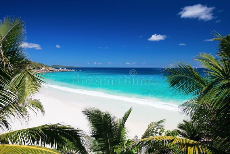 Idyllic Beach In Seychelles Royalty Free Stock Photos