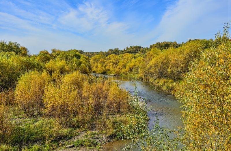 Idyllic bright multicolored  autumn landscape with little fast forest river. Streaming between golden colored trees and bushes. Picturesque fall background stock images