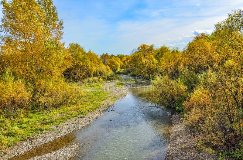 Idyllic bright multicolored  autumn landscape with little fast forest river. Streaming between golden colored trees and bushes. Picturesque fall background royalty free stock photo