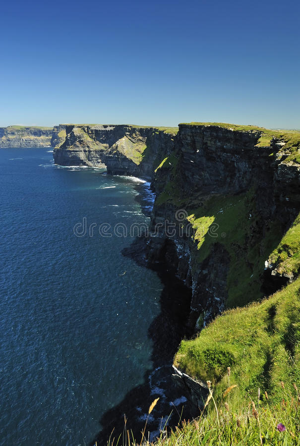 Download Idyllic Cliffs Of Moher In Summer Light Stock Photo - Image: 15314510