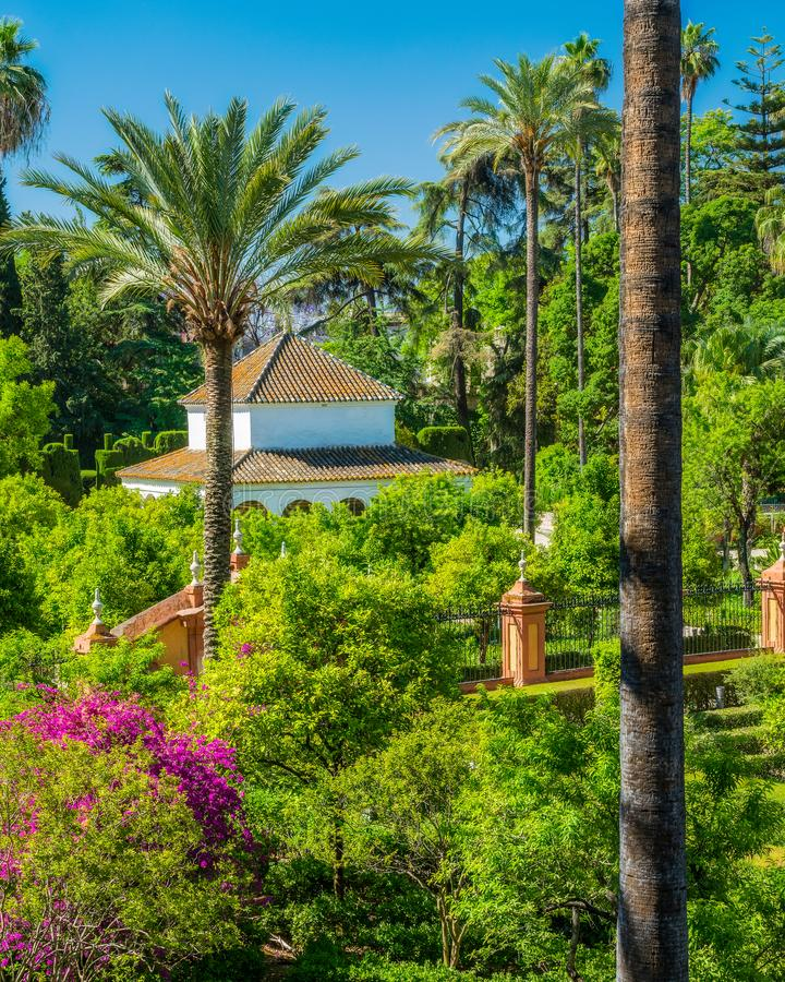The idyllic garden in the Royal Alcazars of Seville, Andalusia, Spain. stock image