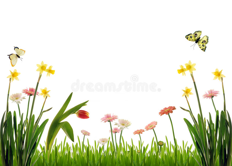 Download Idyllic garden scenery stock illustration. Illustration of easter - 4681084