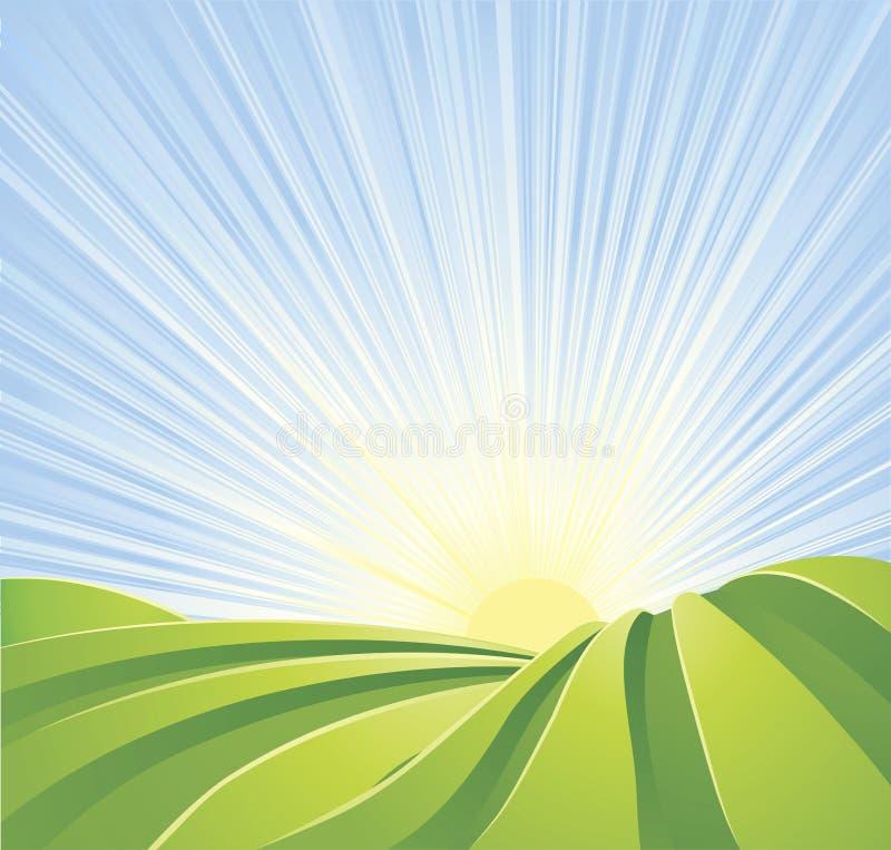 Idyllic green fields with sun rays blue sky stock illustration