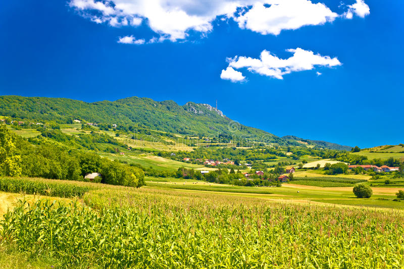 Idyllic green landscape of Kalnik mountain stock image