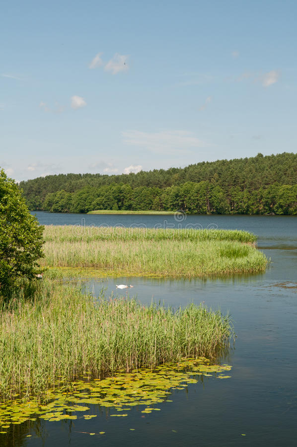 Download Idyllic lake stock image. Image of outdoors, blue, riverscape - 26970399