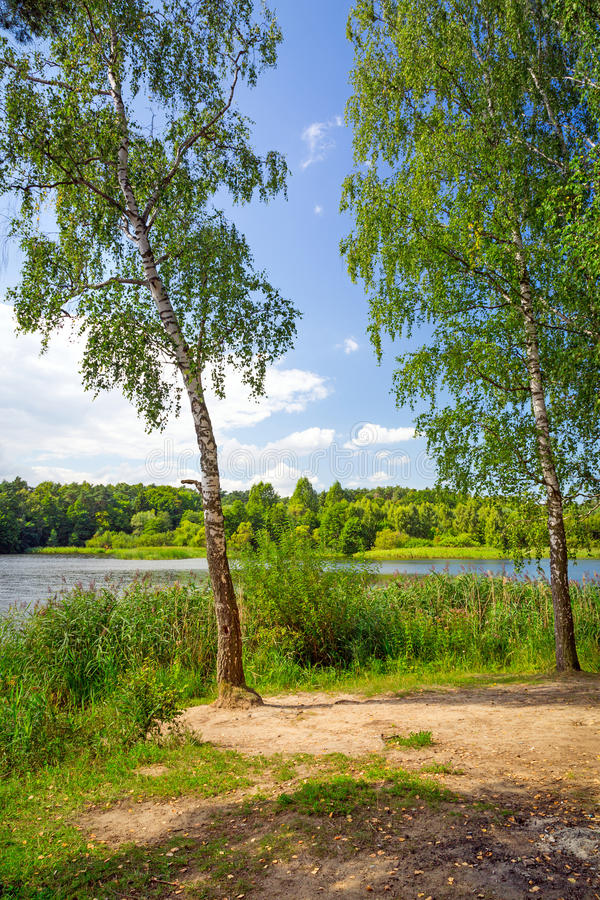 Download Idyllic lake scenery stock photo. Image of beautiful - 33362242