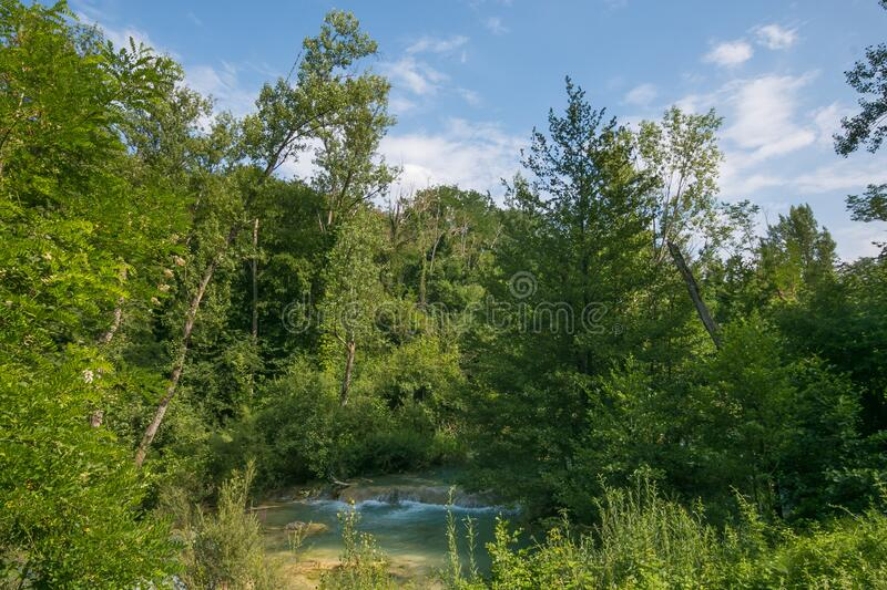 Idyllic landscape with river Elsa in the wood, Tuscany royalty free stock photos