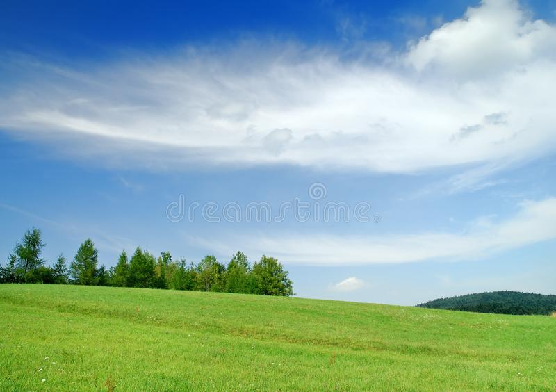 Idyllic landscape, view of green fields and blue sky royalty free stock images