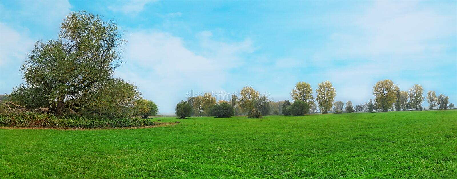 Download Idyllic Meadow Royalty Free Stock Images - Image: 30448249