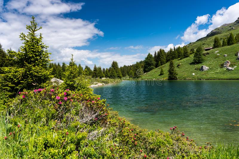 Idyllic mountain lake landscape in the Swiss Alps. An idyllic mountain lake landscape in the Swiss Alps royalty free stock photo