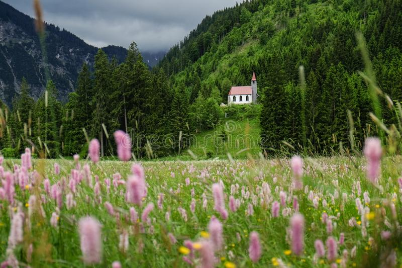 Idyllic mountain landscape in the bavarian alps with a meadow and a church stock images