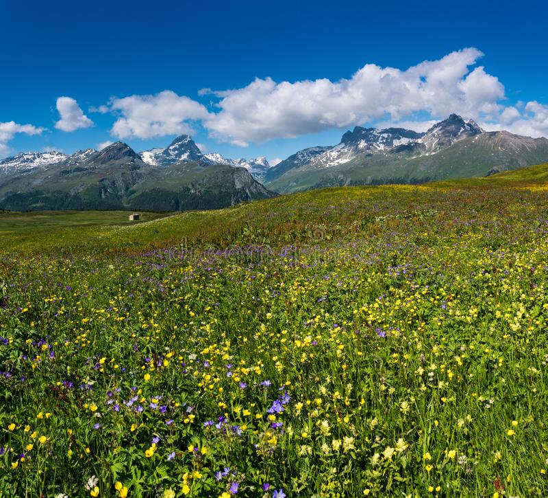 Idyllic mountain landscape in the summertime. An idyllic mountain landscape in the summertime royalty free stock photos