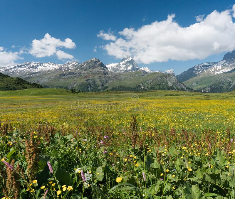 Idyllic mountain landscape in the summertime. An idyllic mountain landscape in the summertime stock images