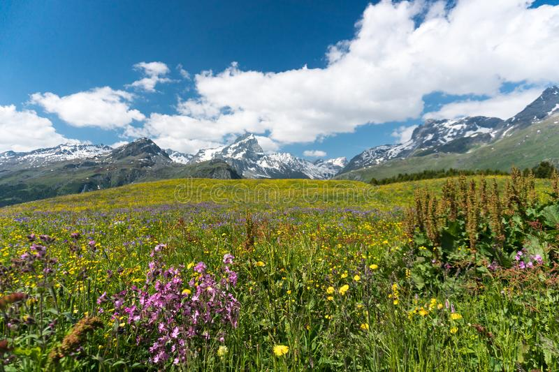 Idyllic mountain landscape in the summertime. An idyllic mountain landscape in the summertime royalty free stock image