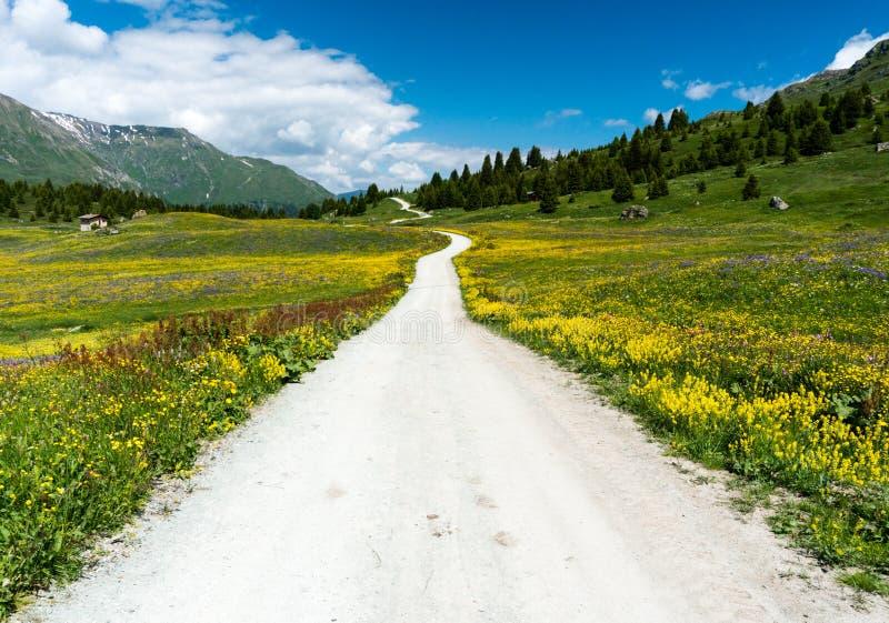 Idyllic mountain landscape in the summertime with a gravel road. An idyllic mountain landscape in the summertime with a gravel road stock photography