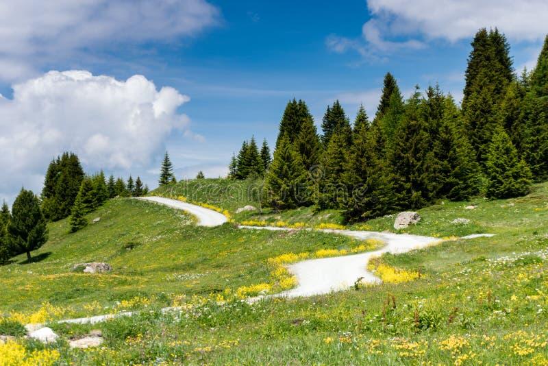 Idyllic mountain landscape in the summertime with a gravel road. An idyllic mountain landscape in the summertime with a gravel road stock photos
