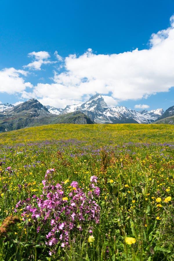 Idyllic mountain landscape in the summertime. An idyllic mountain landscape in the summertime stock photos