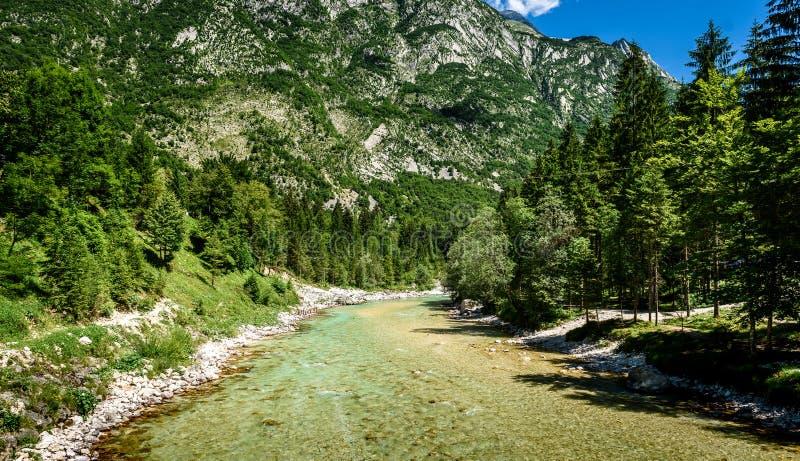 Idyllic mountain river in Lepena valley, Soca - Bovec Slovenia. stock image