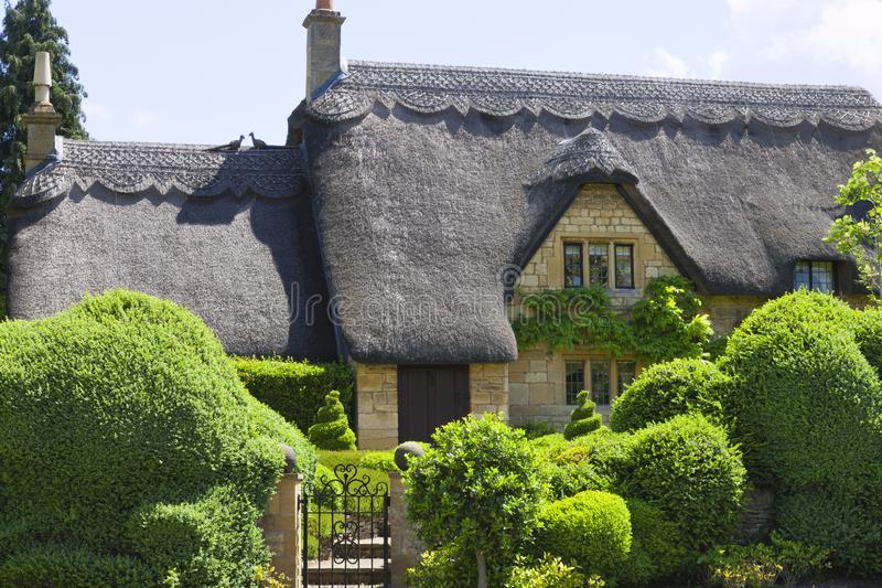 Idyllic old english cottage with green topiary garden. Traditional english stone cottage with thatched roof, green topiary front garden, iron gate, on a sunny royalty free stock images
