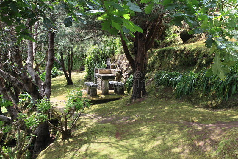 Idyllic Picnic Place On The Azores Stock Photos