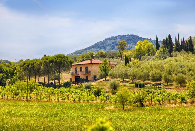 Rural Tuscan landscape with farmhouse, Italy stock photo